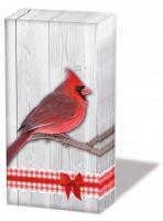 Taschentücher - Cardinal