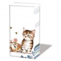 Taschentücher - Cats And Bees