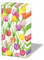 Taschentücher - Magic Tulips