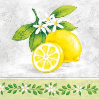 Servietten 25x25 cm - Zitronenbranche