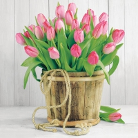 Servietten 25x25 cm - Tulips In Bucket