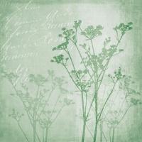 Servietten 25x25 cm - Blumenharmonie Grün