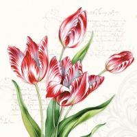 Servietten 25x25 cm - Classic Tulips