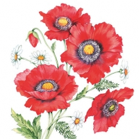 Cocktail Servietten Poppy Scene