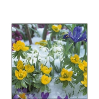 Servietten 25x25 cm - Flowers In Snow