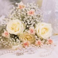 Servietten 25x25 cm - Rosen und Perlen