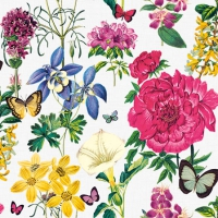 Servietten 25x25 cm - Botanical Florals White