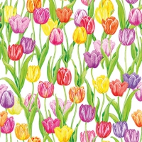 Servietten 25x25 cm - Magic Tulips
