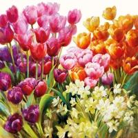 Servietten 25x25 cm - Tulips