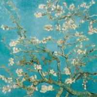 Servietten 33x33 cm - Almond Blossom