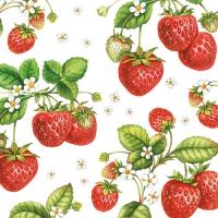 Servietten 33x33 cm - Strawberry Plant