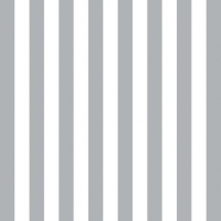 Lunch Servietten Stripes Silver