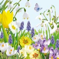 Servietten 33x33 cm - Frühlingszeit