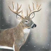 Servietten 33x33 cm - Deer