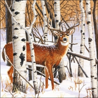 Servietten 33x33 cm - Deer in Forest