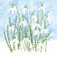 Lunch Servietten Snowdrops in Snow