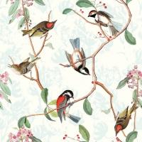 Servietten 33x33 cm - Birdsong