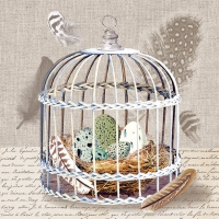 Servietten 33x33 cm - Birds Nest
