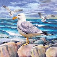 Lunch Servietten Seagulls On Rocks