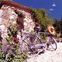 Lunch Servietten Bike in Provence