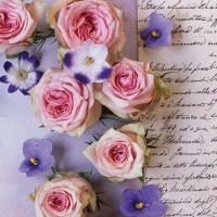 Lunch Servietten Roses & Violets