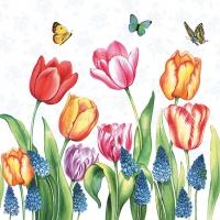 Servietten 33x33 cm - Tulips & Muscari