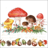 Servietten 33x33 cm - Mushrooms