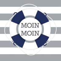 Servietten 33x33 cm - Moin Lifebuoy