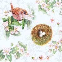 Servietten 33x33 cm - Watching Nest
