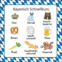 Servietten 33x33 cm - Bayerisch Schnellkurs