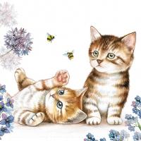 Servietten 33x33 cm - Cats and Bees