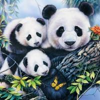 Servietten 33x33 cm - Panda