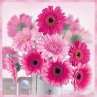 Servietten 33x33 cm - Pink Gerberas