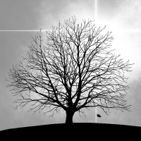 Servietten 33x33 cm - Tree