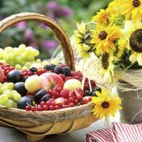 Servietten 33x33 cm - Sunny Fruit
