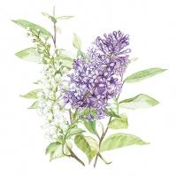 Servietten 33x33 cm - Lilac White