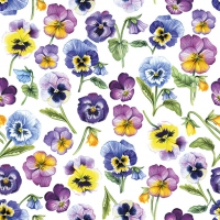 Servietten 33x33 cm - Pansy All Over