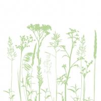 Servietten 33x33 cm - Herbs And Flowers L.Green