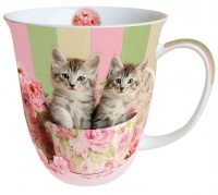 Porzellan-Tasse - Cats in Box