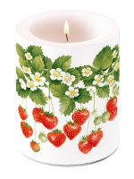 Kerze CANDLE SUMMER FRUITS