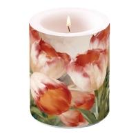 Kerze Tulips Dream