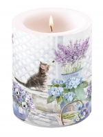 Dekorkerze Candle Big Kitten