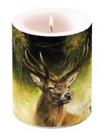 Dekorkerze - Proud Deer