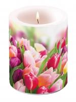 Dekorkerze - Herrliche Tulpen