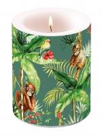 Dekorkerze - Orangutan Green