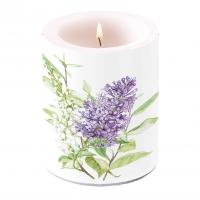 Dekorkerze - Lilac White
