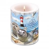 Dekorkerze - Seal Couple