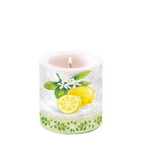 Dekorkerze Lemon Branche