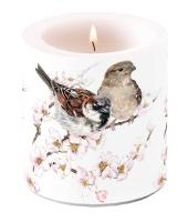Dekorkerze klein - Sparrows Blossom