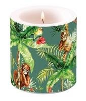 Dekorkerze klein - Orangutan Green